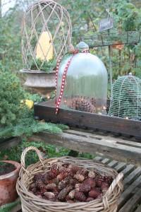 vinterhygge i haven