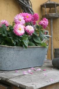 krukker til haven og terrassen