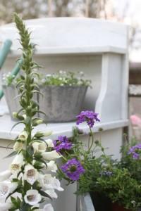 zink krukker til haven