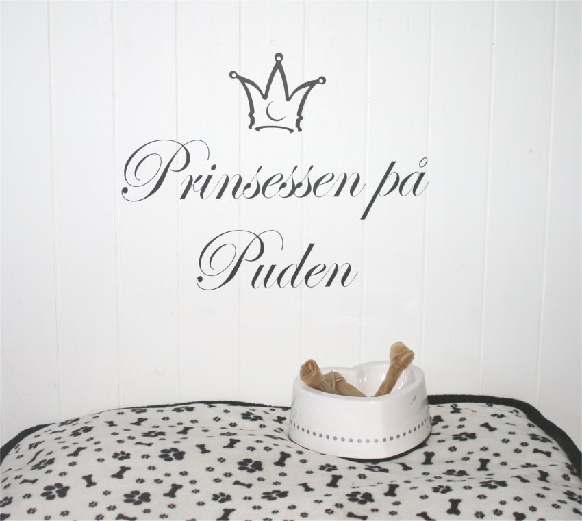 Prinsessen på puden
