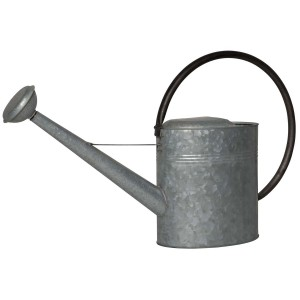 Vandkande-med-sort-hank