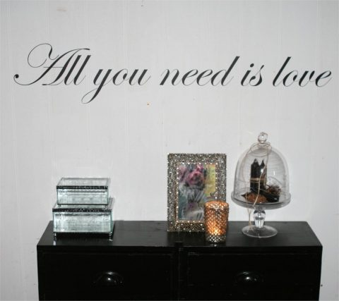 all-you-need