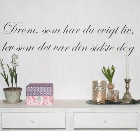 drøm-som-har-du-evigt-liv