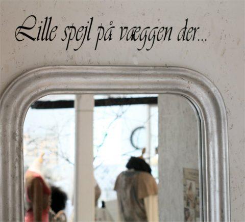 lille-spejl-paÌŠ