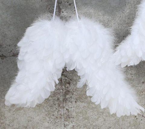 store-engle-vinger