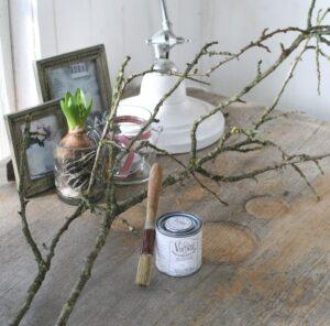 mal på gren med kalkmaling