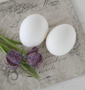 Hønseæg til påske