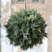 Cypress kugle - lille