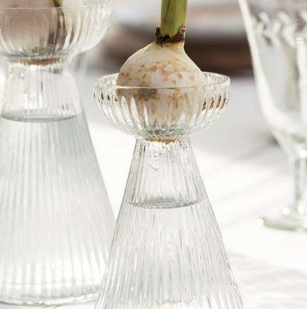 Hyacint glas i rillet glas
