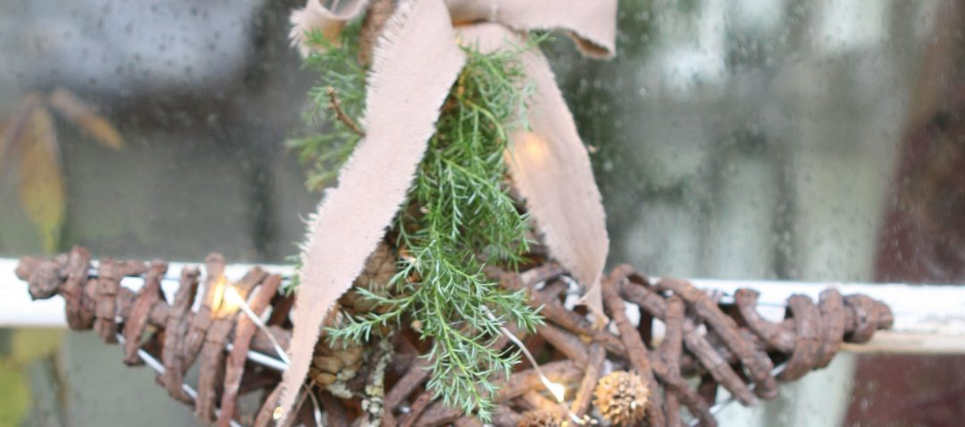Modernistisk Springform Gren. Top I Love Potted Evergreen Trees With Springform YU39