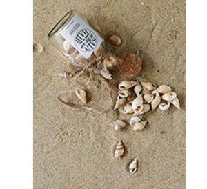 Mini skaller - Sandy Shores Mini Bottle Mix