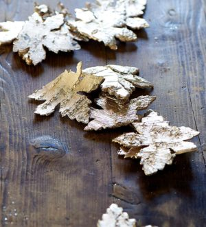 Bark blade - Winter Leaves champagne farve
