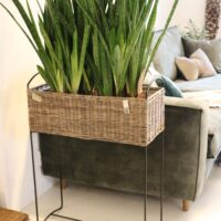 Blomsterstander - Rustic Rattan Planter High