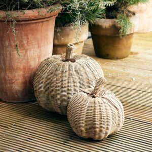 Rustic Rattan Pumpkin S